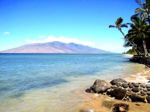 alanui beach2 b