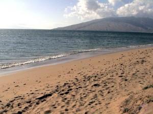 onelio beach b